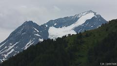 Mont Pourri (Quentin Douchet) Tags: alpes alpesfrançaises alps forêt frenchalps montpourri montpourri3779m nature forest foret landscape montagne mountain nuageux paysage sommet summit