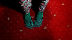 Socks with sandals (Stephanie Overton) Tags: samsung phone wierd glitter green red sock sandals flipflop carpet animal