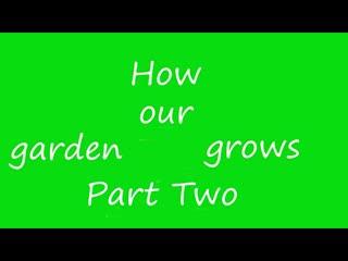 Our Garden Summer 2018 Part 2 Mov 1
