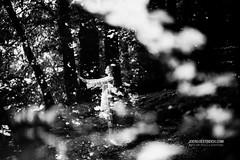 Simultanwelten (check4newton) Tags: simultaneous simultanwelten worlds spirit world geistige welt geisterheiler scahmane schamanismus schönheit ef park baum wald einfarbig porträt wolf wölfe parallel existence tier 18 85mm