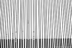 Klanginstallation Josef Baier (jazzfoto.at) Tags: sony sonyrx100m3 rx100m3 rx100miii sonyrx100iii sonydscrx100iii dscrx100iii sw bw schwarzweiss blackandwhite blackwhite noirblanc bianconero biancoenero blancoynegro zwartwit pretoebranco bayern bavaria deutschland germany kunst burghausen burghausenaminn klanginstallation josefbaier studienkirchestjosefburghausen studienkirchestjosef studienkirche