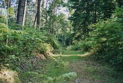 2003 Germany // Fernwanderweg E8 // (maerzbecher-Deutschland zu Fuss) Tags: 2003 fernwanderweg e8 wandern wanderweg natur germany trail wanderwege deutschland maerzbecher wanderzeichen hiking trekking europäischerfernwanderweg weitwanderweg deutschlandzufuss deutschlandzufus nrw
