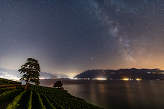 Les vignes et les étoiles  |  The vineyards and the stars (escapevelocity-ch) Tags: hicham dennaoui escape velocity escapevelocitych nightscape switzerland suisse paysage nocturne beautiful amazing magnifique night landscape étoile star photo skies astrophotography astrophotographie nuit étoilé starry nikon d850 planets vaud chexbres mars saturn milky way voie lactée lake geneva lac léman vignes vineyards lavaux