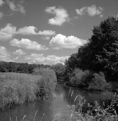 Brandywine river (Rosenthal Photography) Tags: ff120 ilfordlc2912920°c11min epsonv800 ostepfad mittelformat 20180714 6x6 rolleiflex35f schwarzweiss ilfordsfx rotfilter asa200 analog nordpfade landscape oste rollei rolleiflex 75mm sk schneiderkreuznach xenotar f35 35f ilford sfx lc29 129 red filter redfilter epson v800 trees track trail path pathway way brandywine