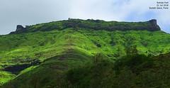 DSC05628 (Prof.Suresh G. Isave) Tags: rohida bhor fortsnearpune forts near simple treks pune onedaytrek