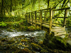Photo of Footbridge on the Corpse Way, Dartmoor.