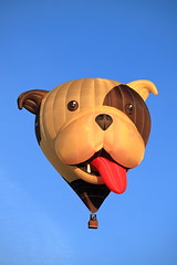 G-OPAW 'Buster Dog' (aledy66) Tags: bristol international hot air balloon fiesta 2018 gas bag canon eos 6d 6d2 markii mk2 mkii clouds sky blue colourfull ashton court ef70300mm special shapes gopaw buster dog