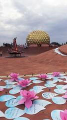 decorations_262 (Manohar_Auroville) Tags: auroville sri aurobindo gathering amphitheatre matrimandir bonfire dawnfire birthday manohar luigi fedele
