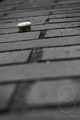 Discarded (eightsix.photo) Tags: affinity affinityphoto art blackwhite bandw blackandwhite bw basingstoke brick bricks brickwall canon contrast composition civic city dslr dof detail depthoffield discarded england eightsixphoto focus candy hampshire haribo green light lines minimal minimalism monochrome mono macro noiretblanc noirblanc outdoor lolly selectivecolour selectivecolor selective sweet sweetie sweety town uk urban