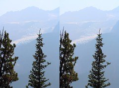 Mt Robson Through Trees (ubernatural) Tags: mtrobson berglake camping backpacking hiking bc canada stphmkre stereophotomaker crossviewstereo 3d mountain