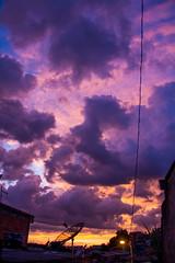 Alvorada (Felipe F Barros) Tags: nascer do sol alvorada amanhecer amanhecendo manhã céu itapevi eu amo cidade jardimsantarita nuvem viela canon canon60d 60d eos canonbr canonbrasil canonsãopaulo canonitapevi cotidiano documental