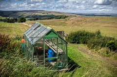 Greenhouse with a view. . . (CWhatPhotos) Tags: cwhatphotos photographs photograph pics pictures pic picture image images foto fotos photography that have which with contain mk digital camera lens micro four thirds olympus ep5 pen 17mm prime f18 northumberland north east england uk ridsdalew countryside outdoor green nature view greenhouse house