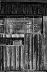 Cabanes N&B 2500 (christophe surman) Tags: aquitaine arcachon noiretblanc noirblanc blackandwhite blackwhite monochrome monochrom cabane old window fenêtre contraste contrast barrack