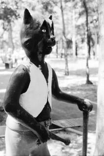 Volandish cat in Park Gokovo, Almaty