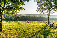 Beautiful morning in France (AnjaIrene_S.F.) Tags: sunrise early morning france trees summer bench sommer bank landscape landschaft