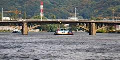 La Meuse et le Pont Atlas (Liège 2018) (LiveFromLiege) Tags: liège luik wallonie belgique architecture liege lüttich liegi lieja belgium europe city visitezliège visitliege urban belgien belgie belgio リエージュ льеж