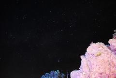 DSC_3041 (_andy_chung_) Tags: 車宿 塔塔加 上東埔 日出 英仙座流星雨 201808 武嶺 合歡山 星空 meteor 阿里山 新中橫 台21 台18 14甲 銀河 光軌