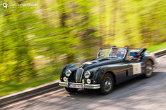 ING Ardenne Roads 2018 (Guillaume Tassart) Tags: jaguar xk ing ardenne roads belgique belgium race racing rally rallye legend classic motorsport historic car