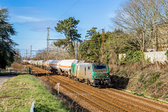 10 février 2018 BB 27010  Train 56720 Hendaye -> Bobigny Vayres (33) (Anthony Q) Tags: vayres nouvelleaquitaine france 10 février 2018 bb 27010 train 56720 hendaye bobigny 33 ferroviaire fret gironde aquitaine sncf bb27000 bb27010