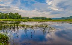 August On The Basha Kill (John Kocijanski) Tags: bashakill wetlands water reflections landscape summer sullivancounty canon5dmkii canon24105mmf4l