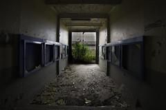 Hall (oliv86) Tags: abandon lost decay batiment industriel atelier graf grafitti street art urbex a7 longueur verriere france étage vieux ancien barre escalier porte poteau jocker tag squatt fete zone area béton old