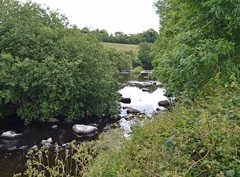 very little water in the river (conall..) Tags: midsummer river lowwater low annacloy quoile tullynacree