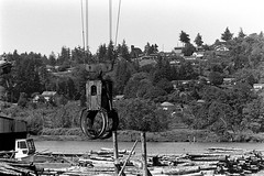 Log Claw (bac1967) Tags: kodak kodaktrix kodaktrixfilm trix tx kodaktx rodinal rodinal150 ro9 r09 leica leitz leicaiiif leicarangefinder leitzwetzlar canonserenar canon serenar 135mm 35mm 135film 135 oregon or coosbay blackandwhite blackandwhitefilm blackwhite monochrome monotone bw grain film logging crane grapple graple logs mill lumbermill