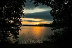 """ Dreiländersee Sunset "" (Kalbonsai) Tags: waterscape dreiländersee outdoorphotography germany water trees sunset nikon d500 1680mm"