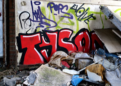 graffiti in Breukelen (wojofoto) Tags: graffiti streetart breukelen nederland netherland holland wojofoto wolfgangjosten abandoned tyson