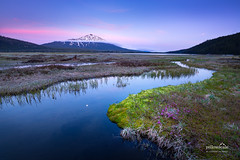 Mt. Bachelor and the Cascade Lakes (nybblr) Tags: oregon pacificnorthwest pnw coast coastline lake water twilight dusk alpenglow sunset flowers longexposure breathtakinglandscapes mountain snow stream