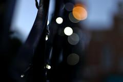 Blarrrred (j.farrimond) Tags: japan tokyo travel movement international blue dark black bokeh blur canon l series