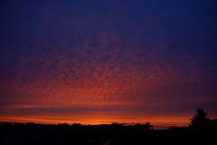 _DSC9846 Afterglow (wdeck) Tags: mooswald sunset abendhimmel abendstimmung abendrot sonya99slt sonyalphaslta99v vollformat himmel wald