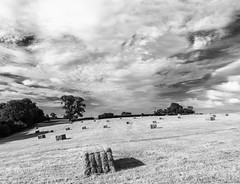 Hay Bales (l4ts) Tags: landscape derbyshire peakdistrict whitepeak farmland haybales thorpe cloudscape clouds blackwhite monochrome circularpolarisingfilter