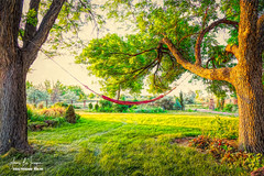 Lazy Afternoon (Striking Photography by Bo Insogna) Tags: countryart hammock trees naturelandscape painting mixedmedia art artwork green red yellow scenic cozy jamesinsogna imagelicensing erie colorado unitedstates