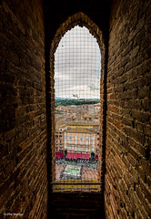 Siena from inside the Torre del Mangia (Phil Marion) Tags: philmarion italy beach public candid woman girl boy teen 裸 asian milf oriental schlampe 나체상 벌거 desnudo chubby nackt nu ヌード nudo 性感的 malibog セクシー 婚禮 hijab philippemarion arab desi indian african chinese ebony latina khỏathân swinger telanjang nubile tattoo fetish erotic feet nude slim plump tranny sex slut nipples ass boobs tits upskirt naked sexy bondage fuck cameltoe cock gay wife crossdress ladyboy pussy panties babe