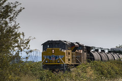 ACe bookends (Tom Trent) Tags: junctioncity oregon unitedstates us unionpacific lanecounty sd70ace emd diesel freight dpu