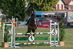 A9909139_s (AndiP66) Tags: springen langenthal 2018 5august2018 august pferd horse schweiz switzerland kantonbern cantonberne concours wettbewerb horsejumping equestrian sports springreiten pferdespringen pferdesport sport sony alpha sonyalpha 99markii 99ii 99m2 a99ii ilca99m2 slta99ii sony70400mm f456 sony70400mmf456gssmii sal70400g2 amount andreaspeters
