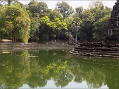 Angkor, Prasak Neak Pean 20180203_120719 DSCN2681 (CanadaGood) Tags: asia seasia asean cambodia siemreap angkor neakpean buddhist khmer temple pond pool tree archaeology canadagood 2018 thisdecade color colour
