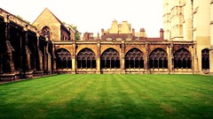 University of Cambridge (sphotography234) Tags: cambridge university lawn research king henry iii old grant ranking rank alumni scholar colleges college tradition institution buildings