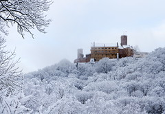 The Fog lifts (uhx72) Tags: winter snow ice germany thuringia thüringen eisenach cold white landscape forest wartburg luther castle worldculturalheritage