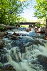 Let it Flow (Jackx001) Tags: 2018 algonquin bushcraft camping canada jacknobre june nature ontario solocamping free life rewild river creek water