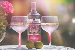 Pink Gin and Rainbows... (KissThePixel) Tags: gin ginandtonic tonic pinkgin gintonic summer longdrink sunny sunnyafternoons july lime geranium glass nikon garden bokeh bokehlicious bokehwednesday light cocktail fun tabletop tabletopphotography creativephotography stilllife stilllifephotography