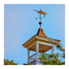 Wind is out of the Northwest (Timothy Valentine) Tags: woodshole fbpost 0718 large hrsw weathervane 2018 widowswalk falmouth massachusetts unitedstates us