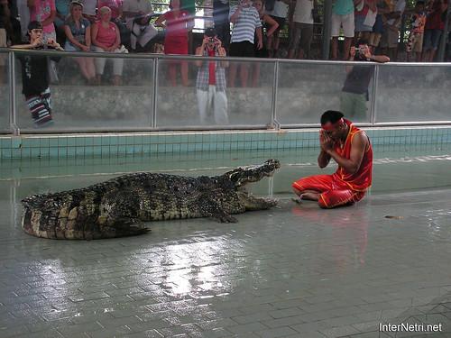 В пащу крокодилу Паттайя Таїланд Thailand InterNetri 22
