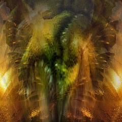 Hidden Animals (ladyinpurple) Tags: treatthis texture pspxi flamingpear photofiltre pineapple