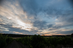 Domaine Fredavelle (Renaud Alouche) Tags: sunshine sun sky horizon clouds cloud colors color light lights blue wines wine nikon 20mm shinny beautiful wow landscape nature natural