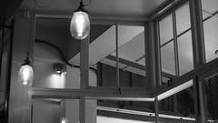 DSC06906 (A Common Courtesy) Tags: a common courtesy wellington auckland new zealand camera photo bw color black white day night monochrome bokeh sony nex 5a nex5a focuspeaking minolta mc pg 50mm 14rokkor fotodiox adapter