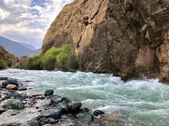 Karatag river. Tajikistan. (Erkin Kasymov) Tags: cloud tree rockstone
