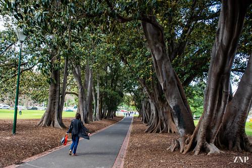 walking down the path.