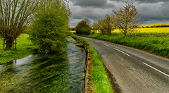 High Road, Broadchalke (cantdoworse) Tags: stream river road countryside country field canon 6d